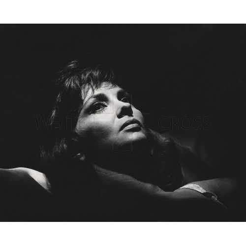 Light and Shadow, Gina Lollobrigida, an Archival Print